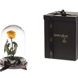 Beauty And The Beast Με Κίτρινο Τριαντάφυλλο και φωτάκια LED