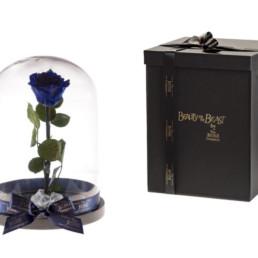Beauty And The Beast Xl Με Μπλε Τριαντάφυλλο και φωτάκια LED