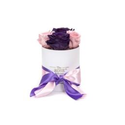 Forever Roses Baby Με Ροζ Και Μοβ Τριαντάφυλλα Σε Λευκό Κουτί Δώρου