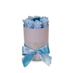 Forever Roses Small Με Τριαντάφυλλα Σε Χρώμα Ανοιχτό Μπλε Σε Ροζ Κουτί Δώρου
