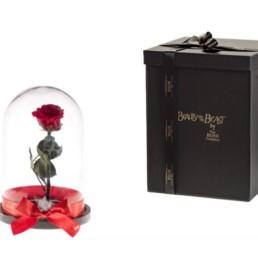 Beauty And The XL Beast Με Κόκκινο Τριαντάφυλλο Και LED Φωτάκια. Μακράς διάρκειας πραγματικό τριαντάφυλλο τοποθετημένο σε θόλο γυαλί