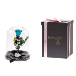 Beauty & The Beast Με Μπλε Τριαντάφυλλο Σε Γυάλα & LED Φωτάκια