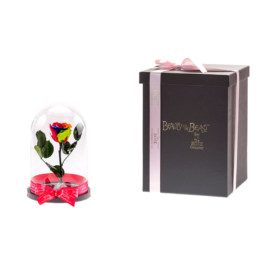 Βeauty & The Beast Small With Rainbow Rose In Glass Dome & LED Lights Included