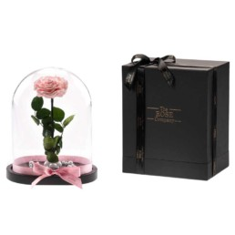 Beauty & The Beast XXL Pink Rose Box Included