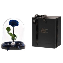 Beauty & The Beast XXL Royal Blue Forever Rose Box Included