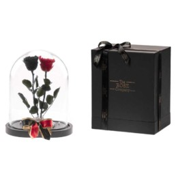 Beauty & The Beast Exclusive Xxl Dome Double Forever Roses Μαύρο & Κόκκινα Τριαντάφυλλα Περιλαμβάνει Και Το Κουτί
