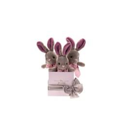 Κούτι Hamper Mini Bunny