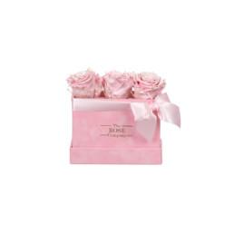 Forever Petite Velvet Ροζ Κουτί Με NEW Pearl Pink Τριαντάφυλλα