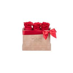 Forever Petite Velvet Nude Κουτί Με Κόκκινα Τριαντάφυλλα