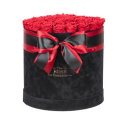 Forever Jumbo Black Velvet Box With Red Roses