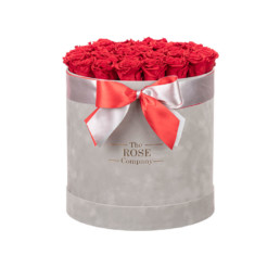 New XL Box Forever  Light Grey Velvet Box With Red Roses