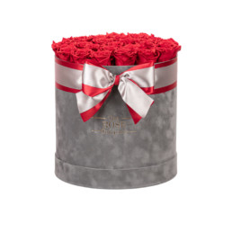 New XL Box Forever Grey Velvet Box With Red Roses