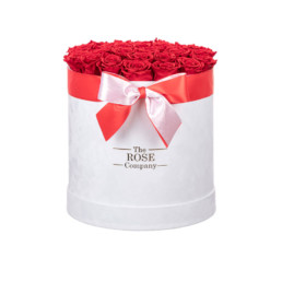New XL Box Forever Velvet White Box Red Roses