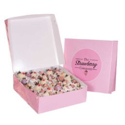 Fancy berry box - Large