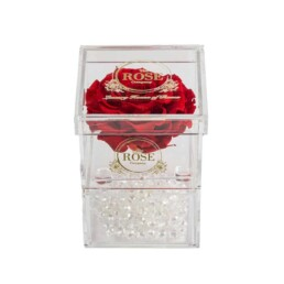 Clear Collection Small Hidden Storage Box Με Γίγας Κόκκινο Forever Rose