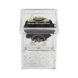 Clear Collection Small Hidden Storage Box Με Γίγας Μαύρα Forever Rose