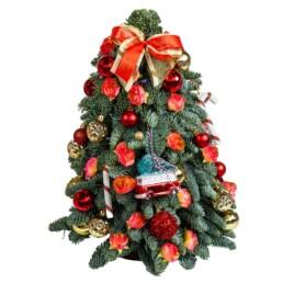 Αληθινό Στολισμένο Χριστουγεννιάτικο Δέντρο «Nordmann» Σε Κόκκινο 40cm